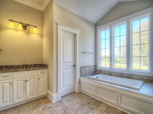 Avery Court master bathroom - tub